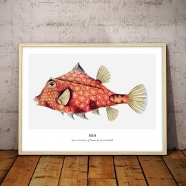 Czerwona ryba (1904), 50x70cm